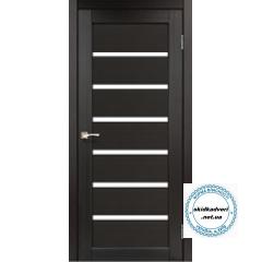 Двері PR-01