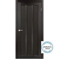 Двери NP-04