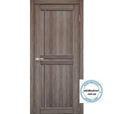 Двери SC-01